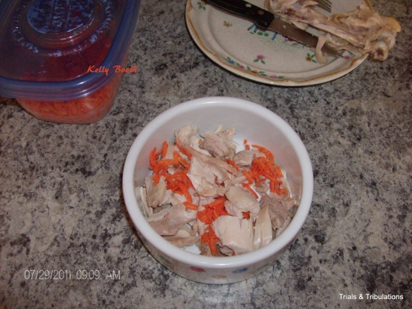 Kelly Booth picture of chicken with carrots