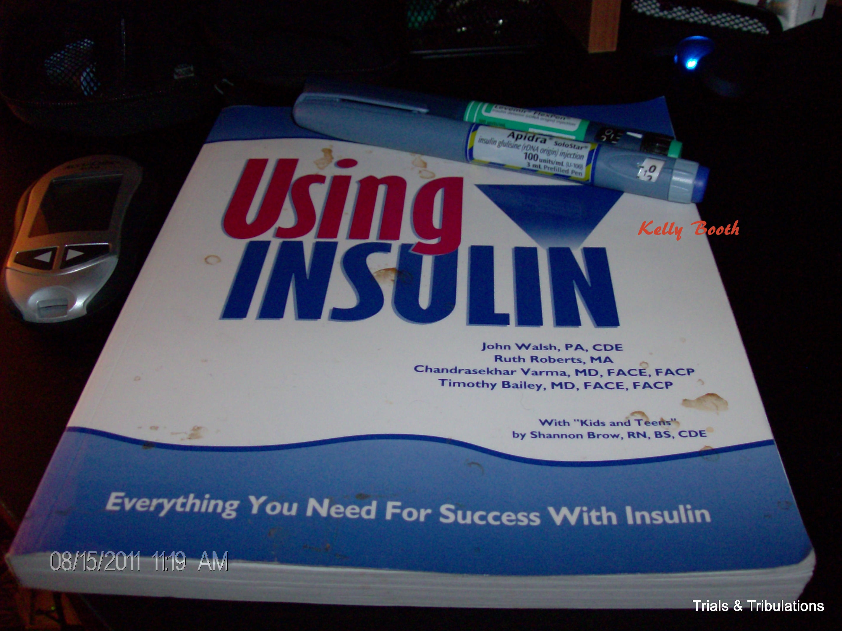 Using Insulin by John Walsh