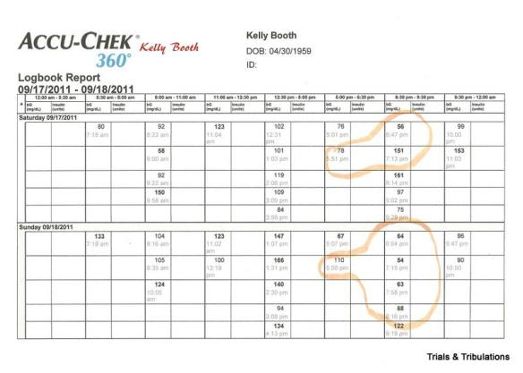 Accu-Chek 360 Logbook Report