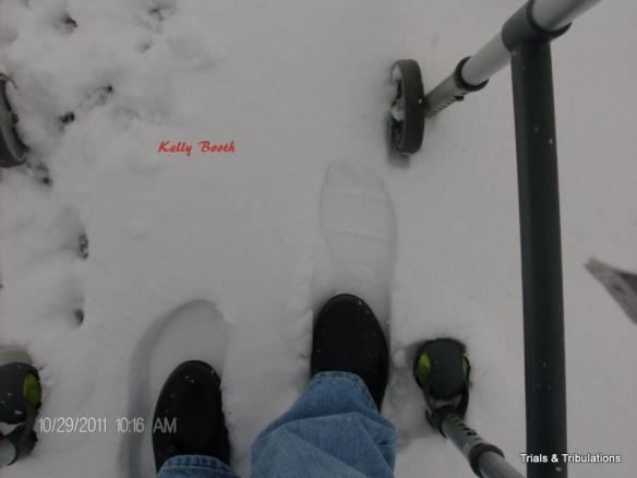 SAS Alpine Boots
