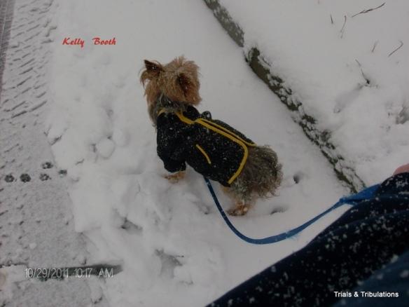 Alex in snow